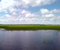 Sth Alligator River Flood Plains